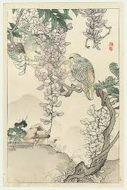 Doves and Wisteria by Kono Bairei  1844 - 1895