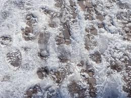 icy prints